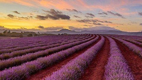 12 ok, amiért neked is el kell menned egyszer Ausztráliába