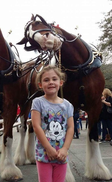 Vicces kedvű ló photbombolta a kislányt