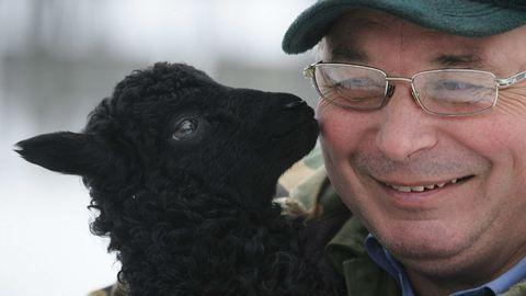 Különleges fekete bárány született Hajdúböszörményben