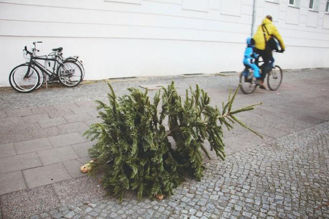 Kihajított karácsonyfákkal vannak tele az utcák
