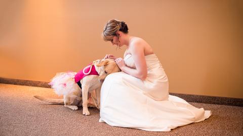 Megható: segítő kutyája kísérte el az esküvője napján