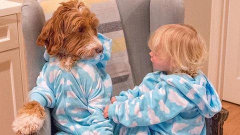 Tüneményes fotók: összeöltözik a kutyus és a kisgyerek