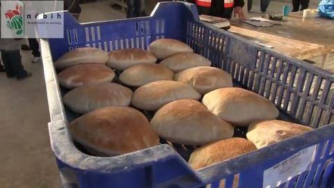 Iszonyú mocskos péküzemet zárattak be Budapesten
