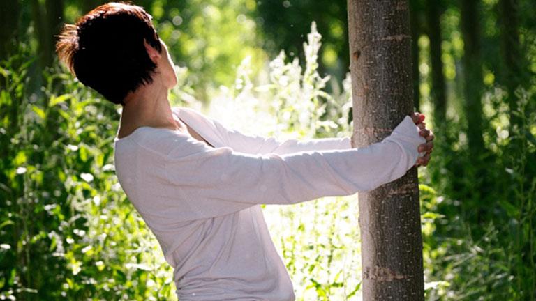 Ezért tesz jót, ha fát ölelgetünk