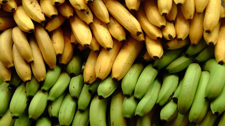 5 tény, amit biztosan nem tudtál a banánról