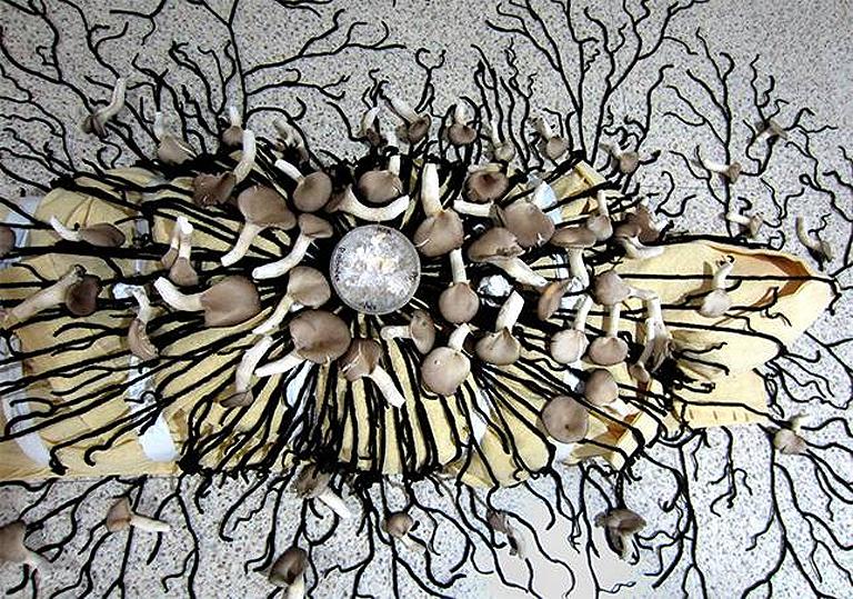 Az Infinity Mushroom Suit működési elve