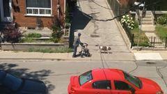 A világ legtürelmesebb kutyája mindig bevárja idős gazdiját – videó