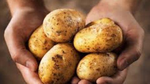1 hónapja csak krumplit eszik, már 10 kilót fogyott – videó