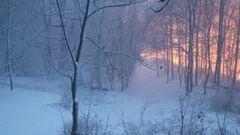Látványos hóömlés a Bakonyban - videó
