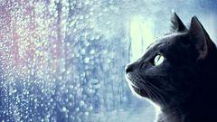 Eső, hó, szélvihar - ma mindből jócskán kapunk