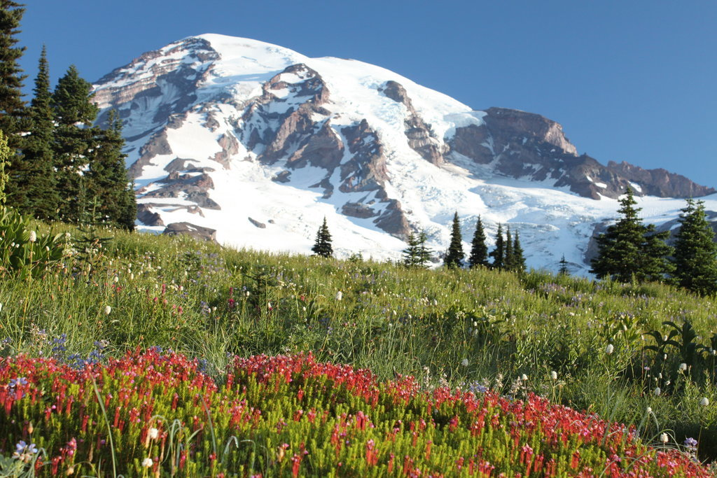 15 csodás amerikai nemzeti park, amit neked is látnod kell - képek