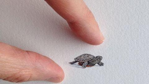 Miniatűr műalkotásokat készít az otthonülős anyuka