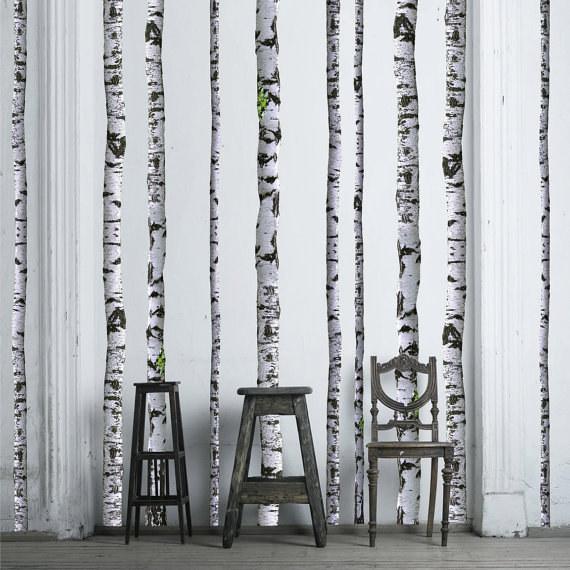 nyírfatörzsek háttérként feldobják az unalmas fehér falakat, ráadásul nem mindennapi