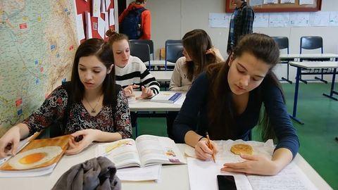 """""""Süldő malacokkal pocsolyában birkózni"""" – újabb nyílt levelek az oktatás reformjáért"""