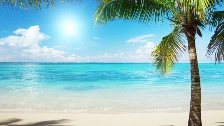 Ideális nyaralóhely szénanáthásoknak (is)