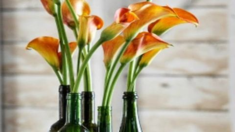 Így háromszorozhatjátok meg a vágott virágok élettartalmát