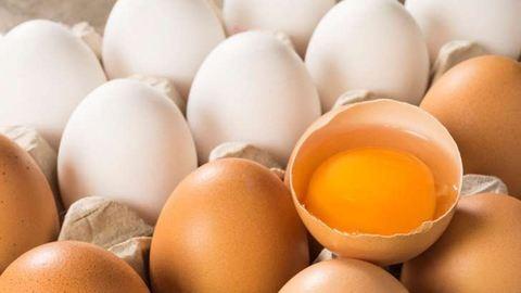 Csökkenteni kellene a tojás áfáját