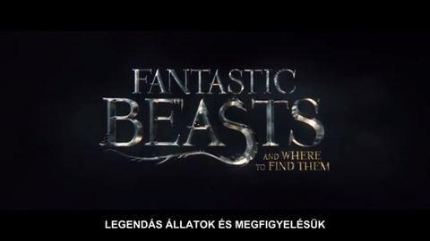 3 részes lesz az új Harry Potter-mozifilm