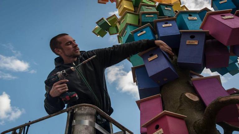 Hiheetlen madáretetőket épít a művész