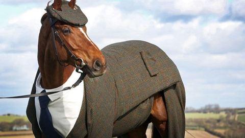 Ilyen elegáns lovat még tuti nem láttál! – képek