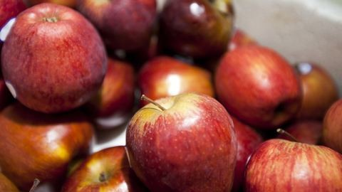 Ellepte a piacot a lengyel alma