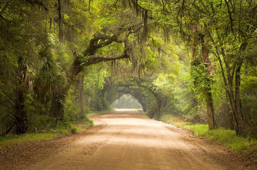 Csodálatos fotók Dél-Karolináról, amit neked is látnod kell