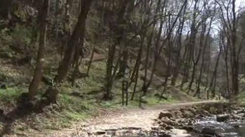 Szikláról zuhant a patakba egy kiránduló a Bakonyban