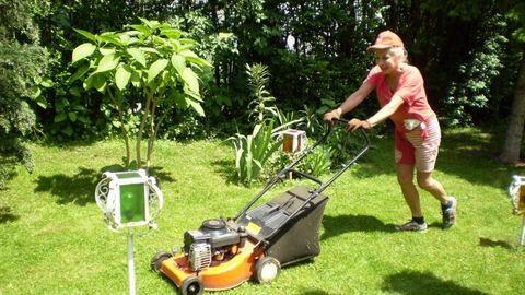 Medveczky Ilona: többnyire négykézláb a kertben gyomlálok