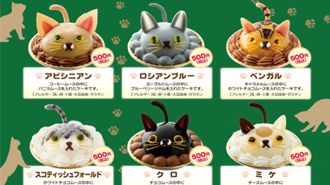 Enni való cicák – macska alakú süteményt árulnak Tokióban