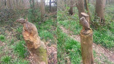 Hihetetlen szobrokat farag a 70 éves néni az erdőben – fotók