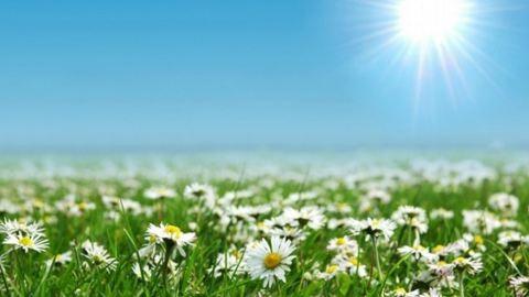 Áprilisi nyár: holnap akár 28 fok is lehet