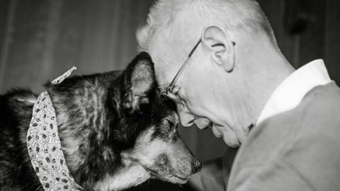 Vak és rákos kutyát fogadott örökbe az önzetlen férfi – megható fotók