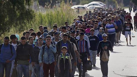 Brazílián át érkezhetnek a menekültek