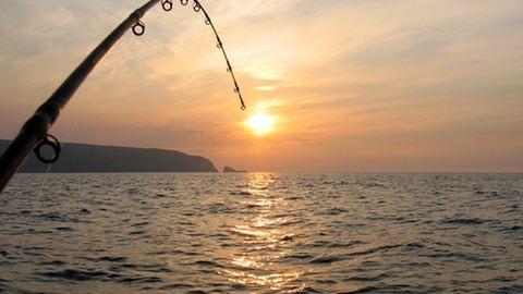 Gigahalat fogtak a Sziki-tóban