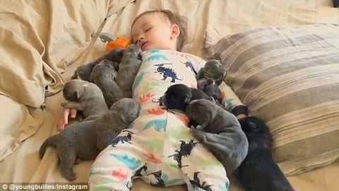 Összebújnak a kiskutyák a gyerekekkel
