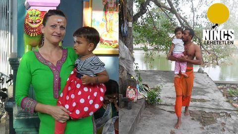 Nincs lehetetlen: egy magyar kertész az indiai kókuszpálmák árnyékában