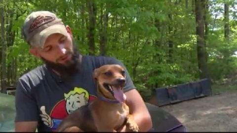 A család kutyájának köszönheti életét az eltévedt 3 éves kisfiú