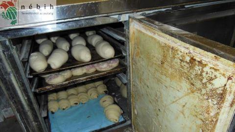 Undorító budapesti pékséget záratott be a Nébih