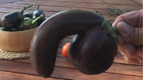 Aukción árulja a pénisz formájú padlizsánt a férfi