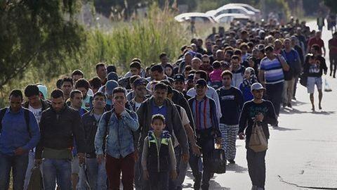 Óriási a nyomás a bevándorlási hivatal munkatársain