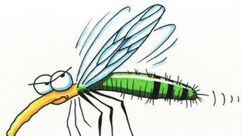 Ezeket a szúnyog- és kullancsriasztókat kerüld!