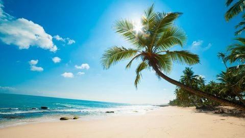 Bárki ingyen nyaralhat fél évig a Karib-tengeren!
