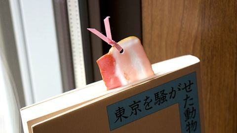 Szalonnát használnak könyvjelzőnek a japánok
