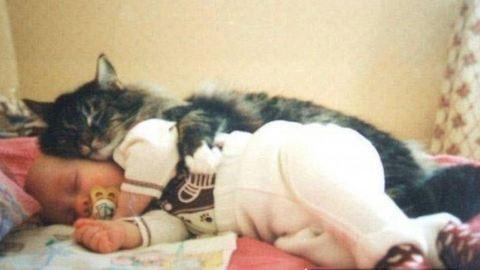 Képes bizonyítékok arra, hogy a gyerek mellé kell macska