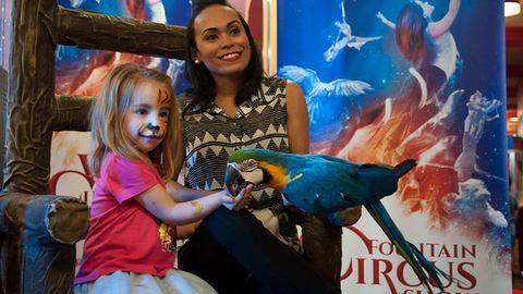 Meglett a Nagycirkuszból elszökött papagáj