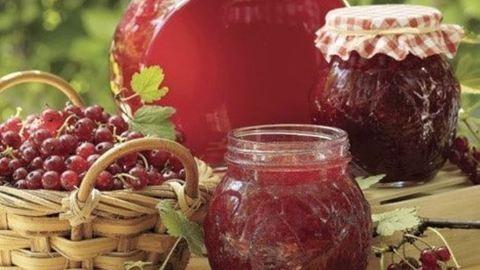 Ribizlilekvár-recept – tartósítószer nélkül készítve