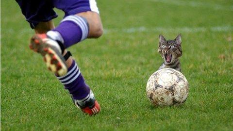 Ráj-ráj Hángeráj: ezzel égetjük majd magunkat a foci-Eb-n