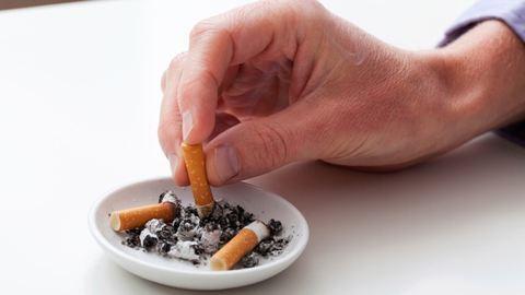 Durva cigitilalmat vezettek be Kaliforniában
