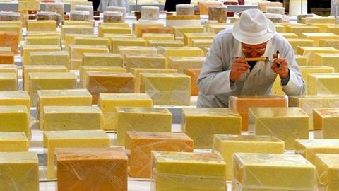Így lesz a sajtból áram