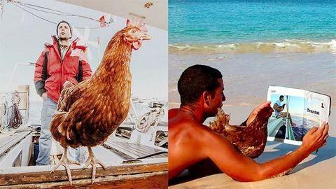 Csirkéjével utazza körbe a világot a francia férfi